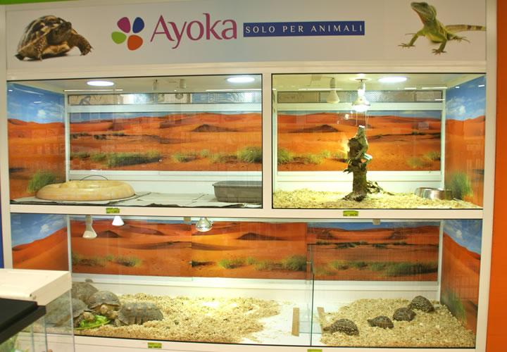 Rettili acquari dautore