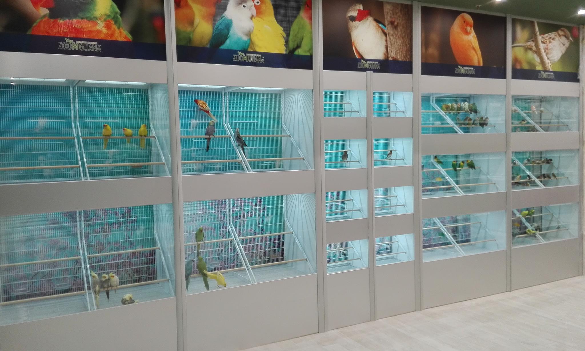 Acquari d 39 autore specialisti in arredamento negozi animali for Arredi d autore